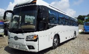 туристический автобус Kia Granbird Parkway 2011г