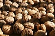 Предлагаю ядро грецкого ореха различных фракций и цвета.